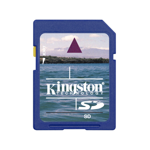 Kingston 2GB SD Card